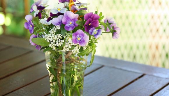 Son ideales para la terraza, jardín o balcones, pero las flores también ayudan a mejorar el ánimo y la salud. (Foto: Irmeli Koskenoja / Pixabay)