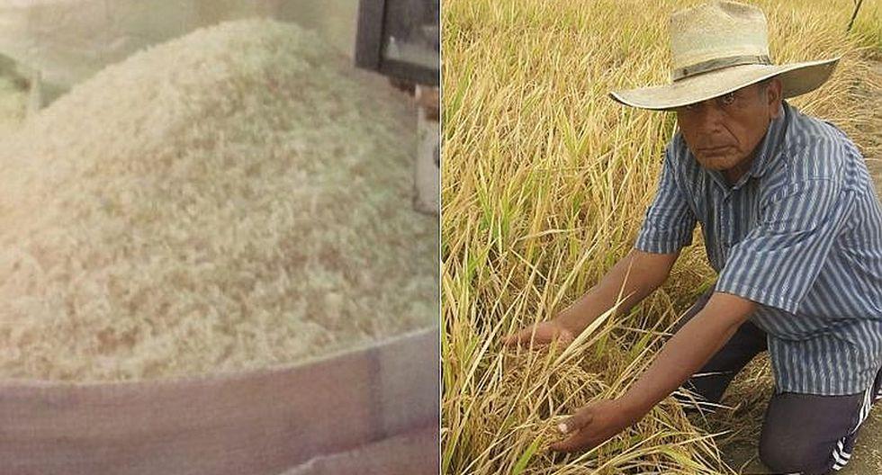 Agricultores preocupados por el bajo precio del arroz y amenazan con paro