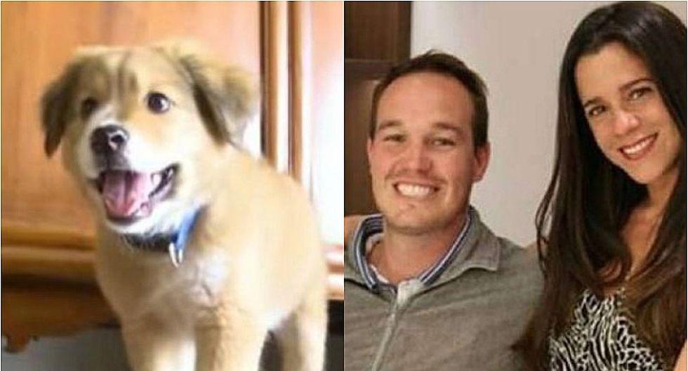 Adopción responsable: Conoce quién se quedó con el perro adoptado por Vanessa Terkes y George Forsyth