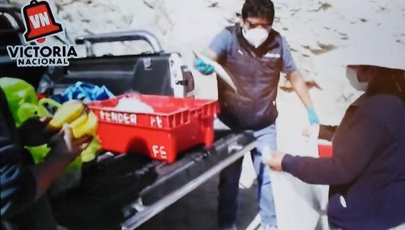 El candidato Christian Lenin Batallanos Quispe del partido Victoria Nacional entregó pescado. (Foto: captura de video del facebook del candidato)