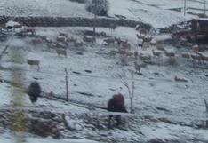 Anuncian que nieve y lluvias caerá en 53 distritos de la región Huancavelica