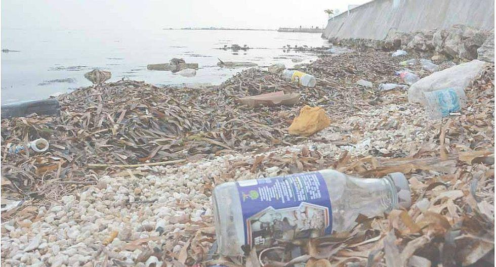 El 80% de la contaminación de los océanos es producto de la actividad humana