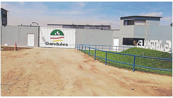 "Hampones ingresan a empresa ""Gandules"" y se llevan herramientas"