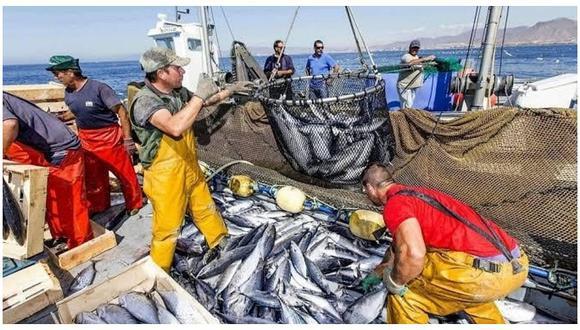 La cuota se aplicará a las actividades extractivas realizadas por embarcaciones de mayor escala.