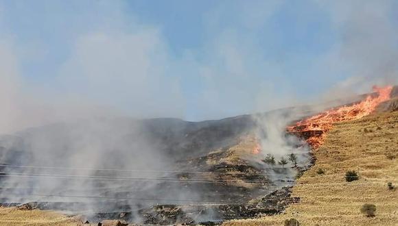 Campesinos informaron sobre la pérdida de una gran cantidad de pastizales, forrajes y sembrios. (Foto: Difusión)