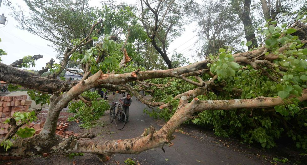 Un residente empuja su bicicleta bajo las ramas de un árbol caído a lo largo de una carretera después de la llegada del ciclón Amphan en Satkhira, Bangladesh, el 21 de mayo de 2020. (AFP / Munir Uz zaman)