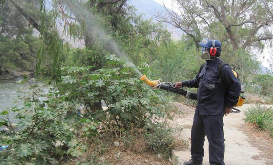 Áncash: La Uta ataca a 20 niños en Pallasca