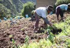 Midagri aprueba nuevas reglas para los pequeños productores del Fondo Agroperú