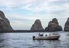 Fondo Paracas: en búsqueda de la conservación de la Reserva Nacional