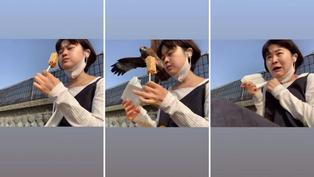 Viral: Águila sorprende a joven al robarle sus alimentos