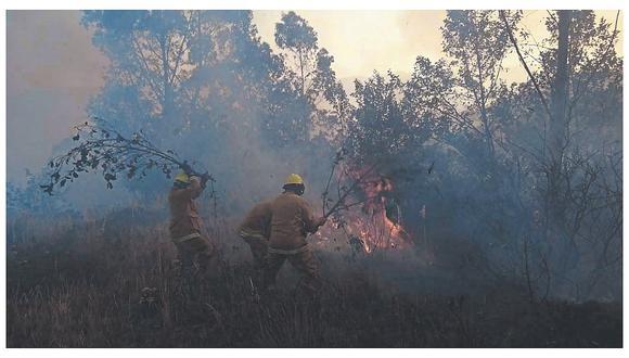 Mitigan incendio en área protegida en Áncash