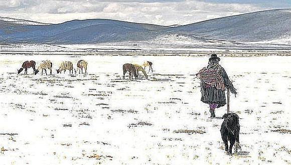 Se vienen fuertes heladas en Cusco y coordinan acciones de prevención