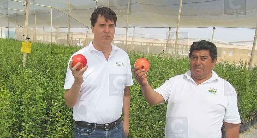 Agricultores reciben plantaciones de granada Wonderfull para su cultivo en 80 hectáreas