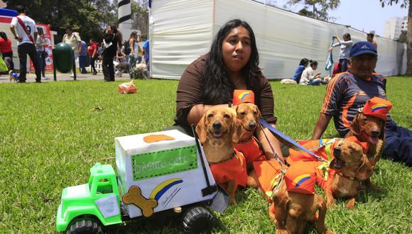 Las personas que se dedican al paseo de mascotas deberán acreditarse ante la Municipalidad de Miraflores. (Imagen referencial/Archivo/GEC)