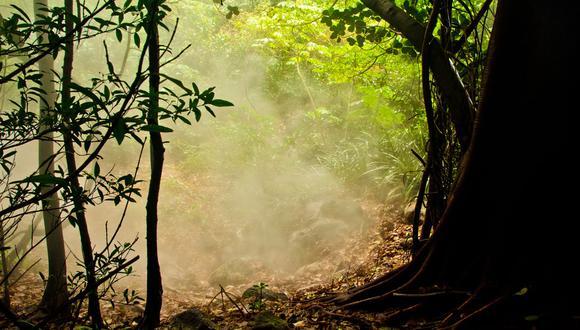 Durante los últimos tres años han trabajado con satélites de imágenes visuales, sistemas de temperatura, entre otros, para identificar sitios sospechosos donde pudo haber caído la aeronave en la selva de Costa Rica. (Foto: Facebook)