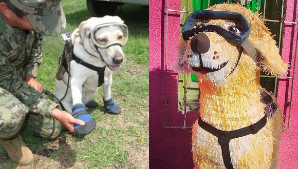 'Frida' la perra rescatista de México es imagen de distintos productos