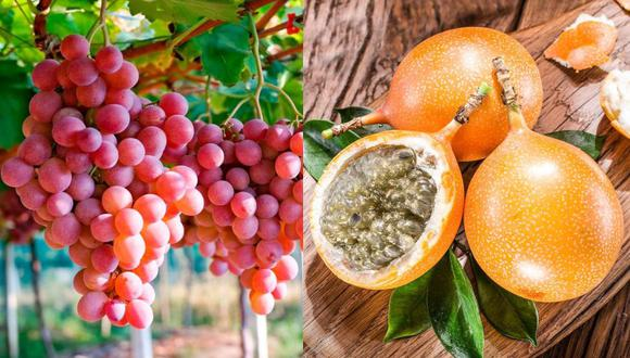 Midagri anunció que avanzan las negociaciones para el acceso de la uva y granadilla a Chile. (FOTO: GEC)