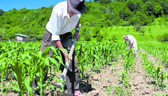 Exministro de Agricultura Milton Von Hesse alerta que la productividad se reduciría y, por lo tanto, también la competitividad de cara al mercado internacional
