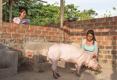 Luz Arucanqui y su ejemplo de emprender en familia