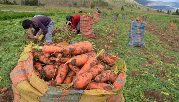 El Congreso de la República sigue debatiendo el nuevo régimen agrario. (Foto: GEC)