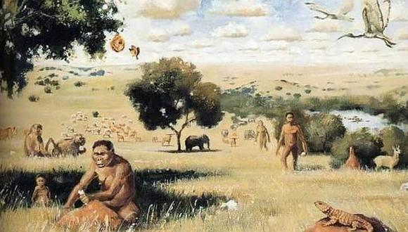 Los Paranthropus se habrían extinguido por ser vegetarianos según estudio (FOTOS)