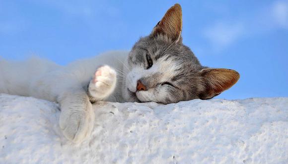¿Problemas para dormir? Este ejercicio podría ayudarte