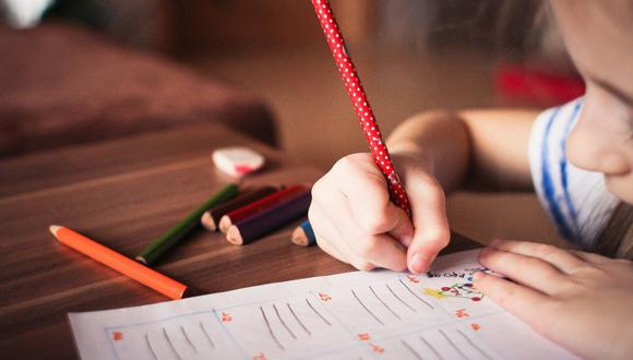 La suspensión de clases para evitar un contagio es una oportunidad para crear  actividades que fomenten la lectura y nutran sus conocimientos en casa. (Foto: Pixabay)