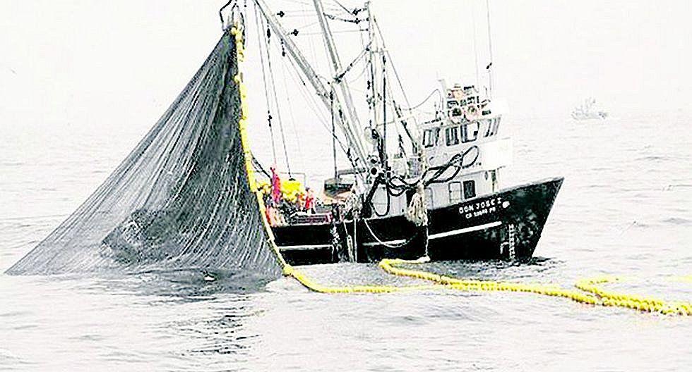 Ordenan término de la pesca de anchoveta