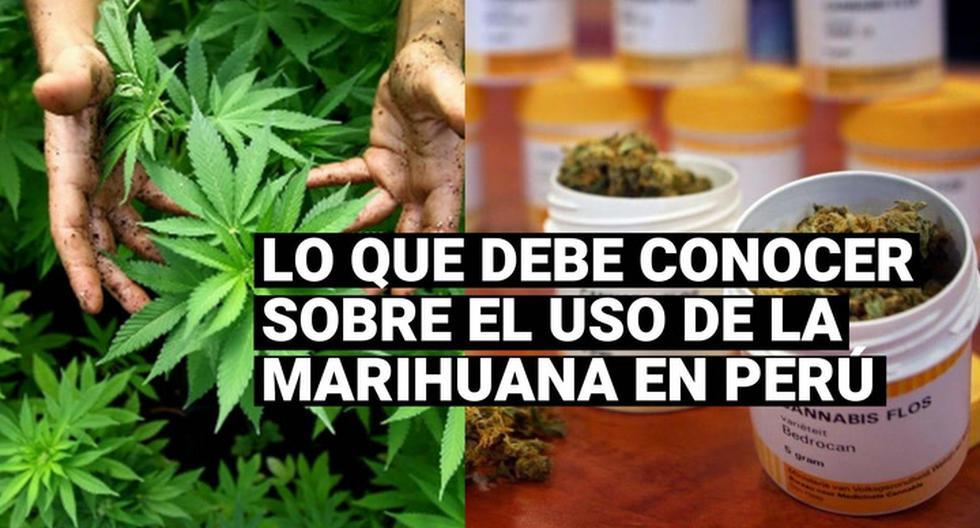 el-uso-de-la-marihuana-en-peru-y-que-momento-se-puede-usarlo