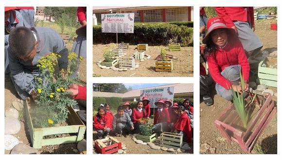 Botiquín ecológico: escolares de Junín cultivan sus propios remedios caseros (VIDEO)