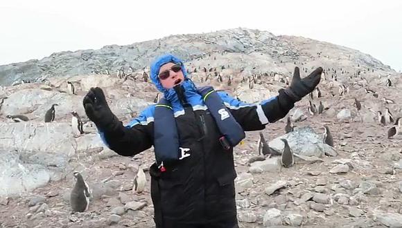 YouTube: Pingüinos huyen despavoridos al escuchar a cantante de ópera (VIDEO)