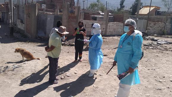 Arequipa:caso de rabia en gato causa preocupación en Cayma