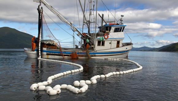 En Oceana alertan que permitir la pesca de bacalao en un área protegida, como la futura Reserva Nacional Dorsal de Nasca, es ilegal porque la ley de áreas protegidas no permite ninguna actividad fuera del monitoreo. (Foto: Adex)