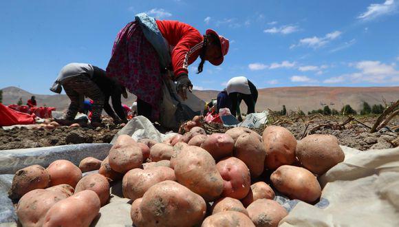 María Antonieta Alva dijo que entregarán créditos a pequeños productores con tasas de 3.5% a través del Fondo Agroperú