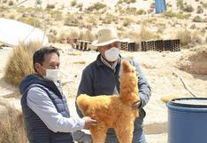 Alpaqueros y artesanos de Aruntaya culminan capacitación