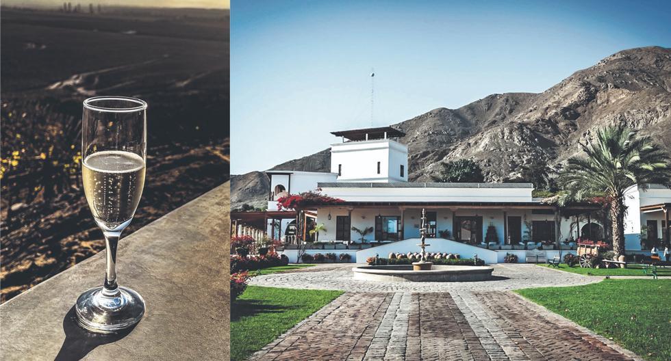 El valle de Ica: primera parada, Viñas Queirolo