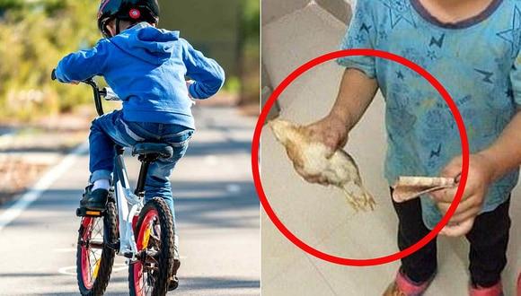 Niño atropelló a un pollito con su bicicleta y trató de salvarlo llevándolo al veterinario