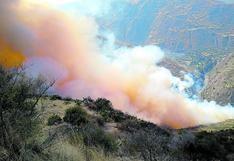 Joven fallece por intentar apagar incendio forestal que arrasaba con sus cosechas en Huancavelica