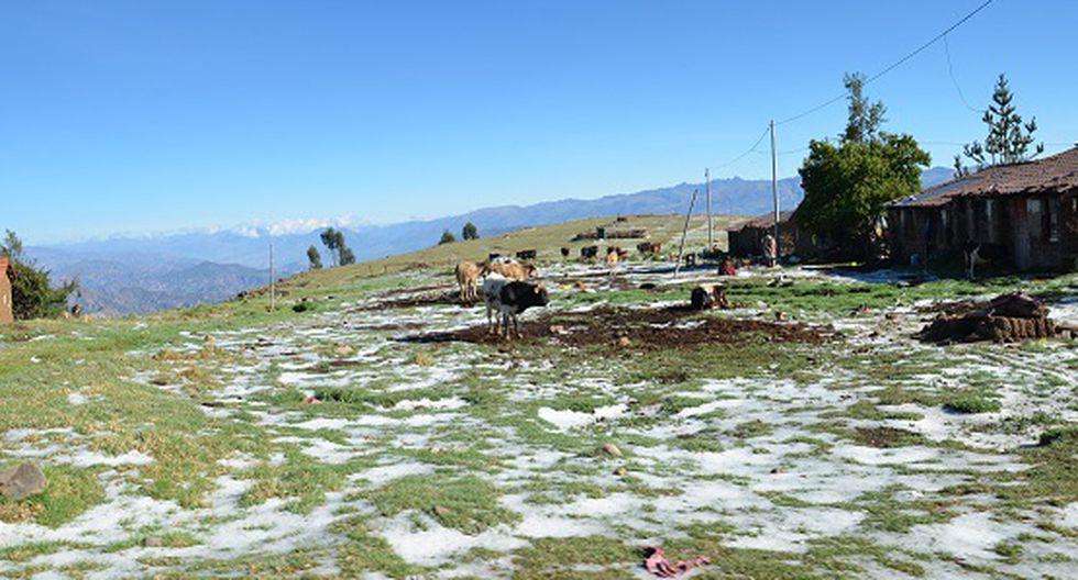 Intensa nevada cae en las alturas de la comunidad de Quispillaccta