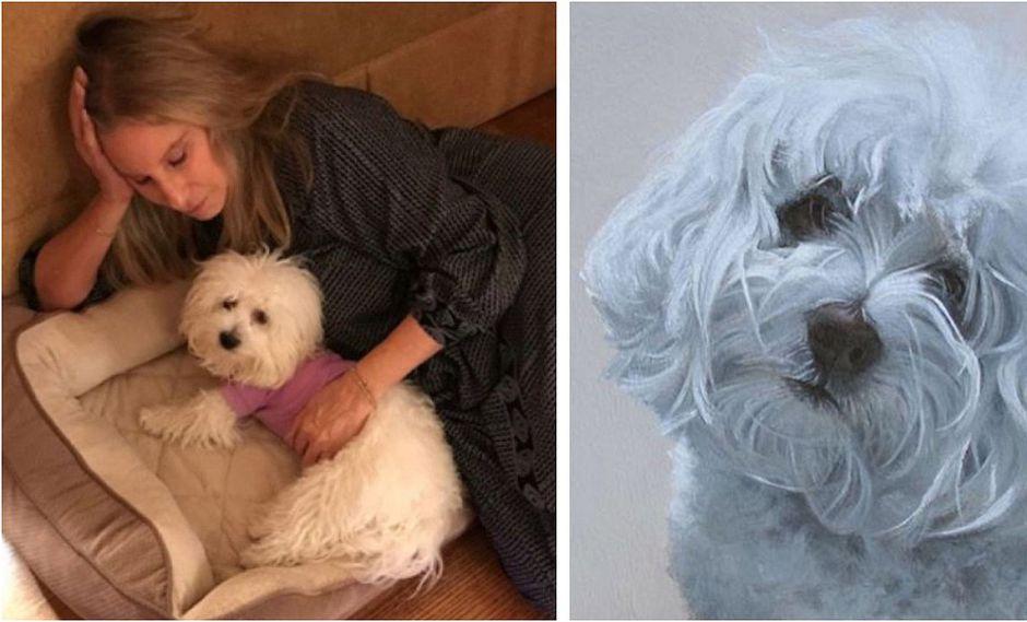 """Barbra Streisand confirmó que clonó a su perro pero no pudo """"clonar su alma"""""""