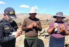 Huancavelica: Policías regalan cuyes a familia que perdió su granja en incendio