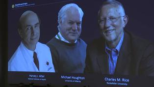 Nobel de Medicina para tres descubridores del virus de la hepatitis C en plena pandemia