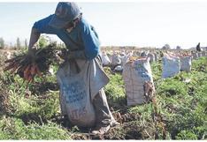Agricultores se quedarían sin agua para sus cultivos en la región Piura