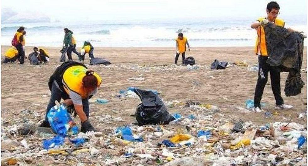 ¿Quieres ayudar a limpiar las playas? conoce cómo hacerlo