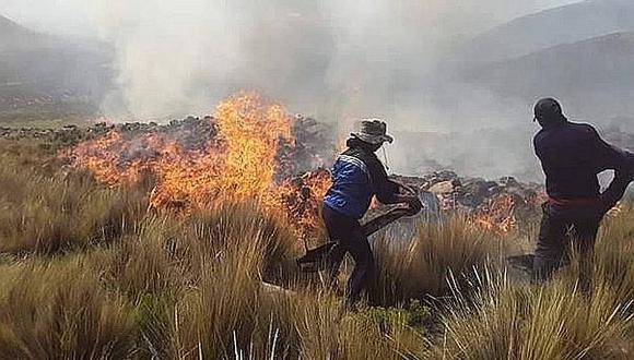 Extinguen ocho incendios forestales en cinco regiones del país