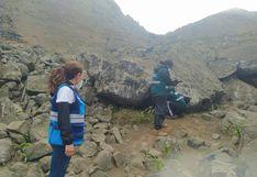 Municipalidad de Lima realizó inspección en lomas de VMT para corroborar denuncias ambientales