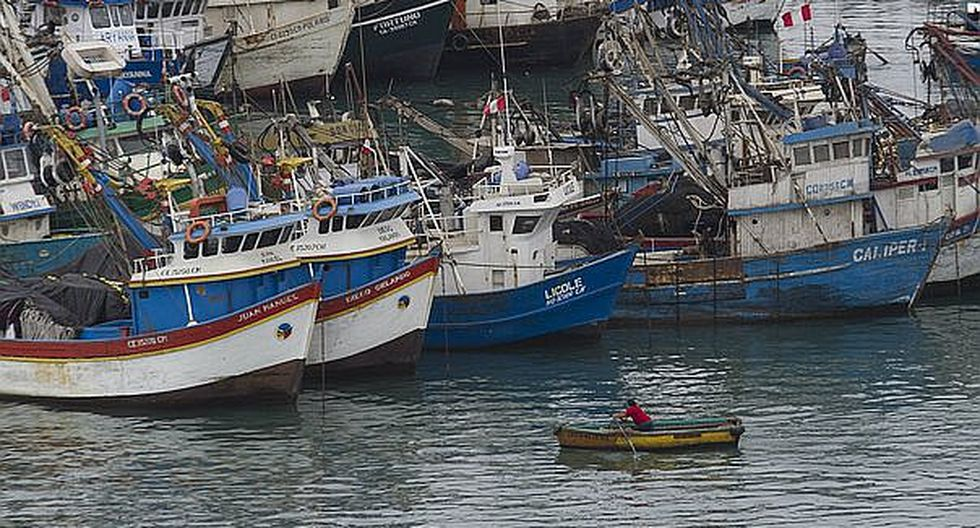 SNP: Industria pesquera pierde competitividad