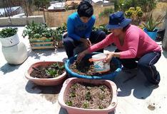 Apurímac: estudiantes construyen huertos en familia para fortalecer la comunicación