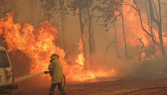 Incendios forestales destruyen 71 casas en Australia. (Foto: AFP)