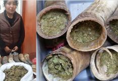 Mujer intentó ingresar droga a penal escondida en cuernos de toro (FOTOS)